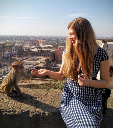 Кормлю обезьянку