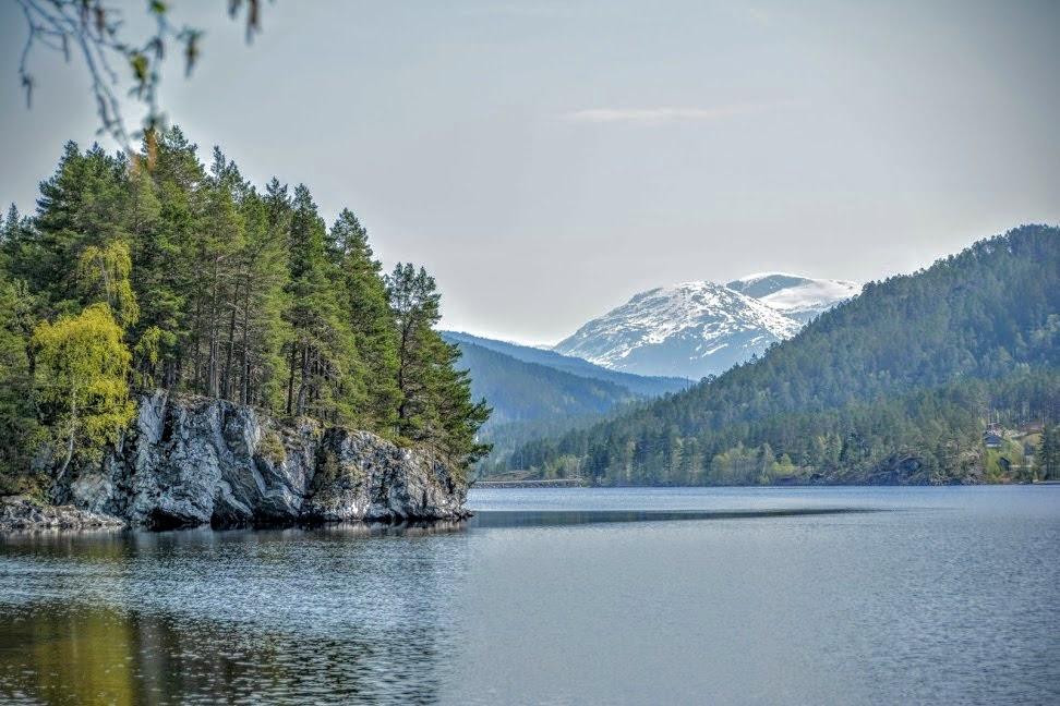 Nature Norway 11