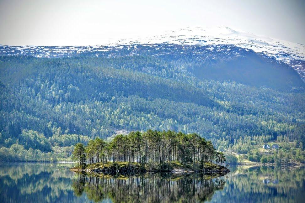 Nature Norway 12