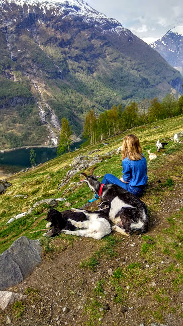 Nature Norway 7